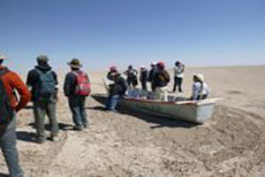 There is no accurate estimate of the numbers of Bolivians and wildlife displaced by the disappearance of Lake Poopó, high in the Bolivian Andes.