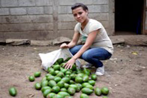 Oneida helps on her family's farm in Nicaragua and takes special pride in the avocado crop. (Photo by Audrey White)