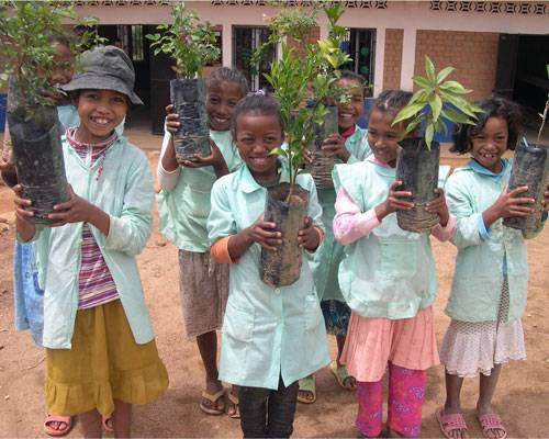Students preparing to plant trees at an FJKM school