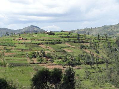 Land surrounding Murambi Memorial in Rwanda