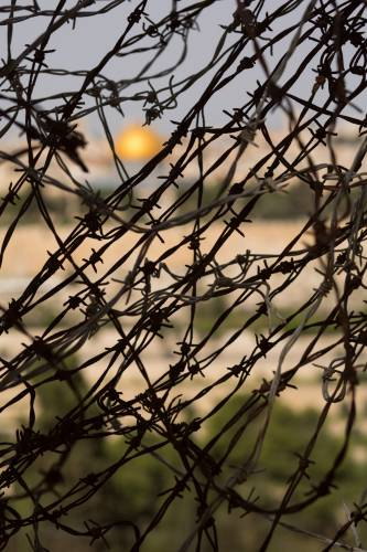 Dome of the Rock, Israel, barbed wire, Mosaic of Peace