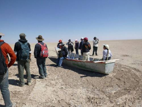 There is no accurate estimate of the numbers of Bolivians and wildlife displaced by the disappearance of Lake Poopó, high in the Bolivian Andes. (Photo by  Joke Neels)