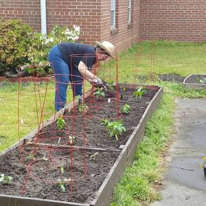 Hunger Action Advocate Jessica Fitzgerald tends to a vegetable garden at her church in the Presbytery of Eastern Virginia. (Photo by Ray Fitzgerald)