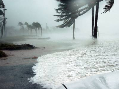 Hurricane batters Florida coast