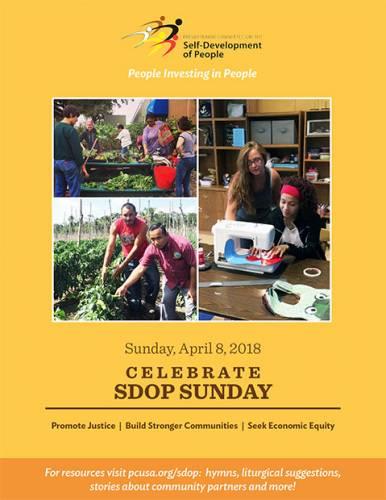 SDOP Sunday cover