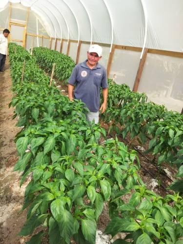 Trio Farmers in Development Pre-Cop