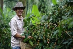 January Main: Jaime Escobar tending his coffee plants outside of Salvador Urbina, Chiapas (photo: Cristobal Lohr Castelo)