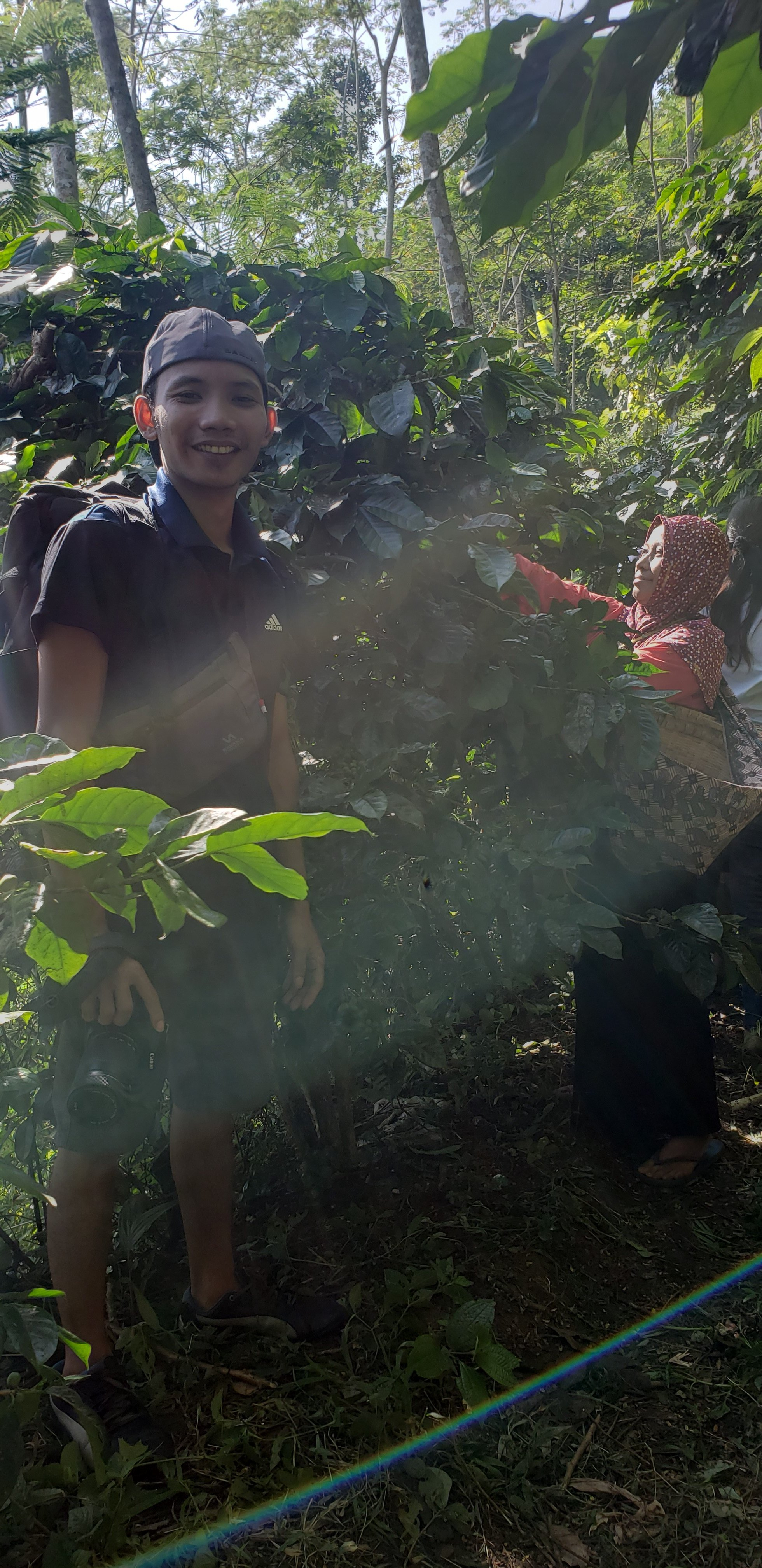 Farsijana's student Roli harvesting coffee beans with Mrs. Marwiyah.