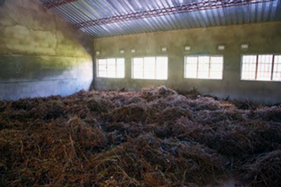 A bountiful harvest of soybeans dry in one of the new classrooms at the Chasefu Theological College.