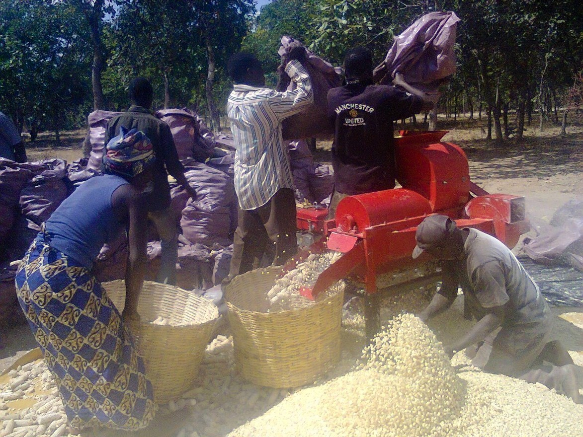 We heard from Rev. Nyirongo about the first harvest at the Agricultural Income Generating Activity (AIGA) and were able to see the shelling process thanks to social media.