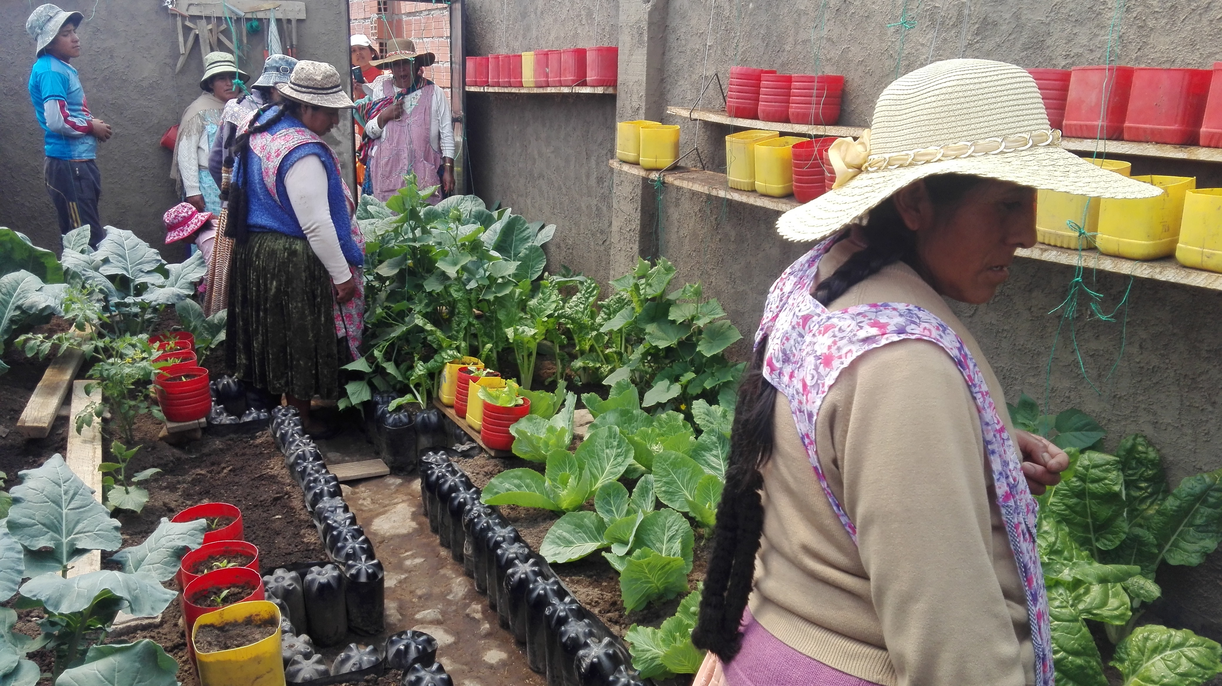 A workshop on how to produce, carried out in a local family greenhouse, El Alto, Bolivia.
