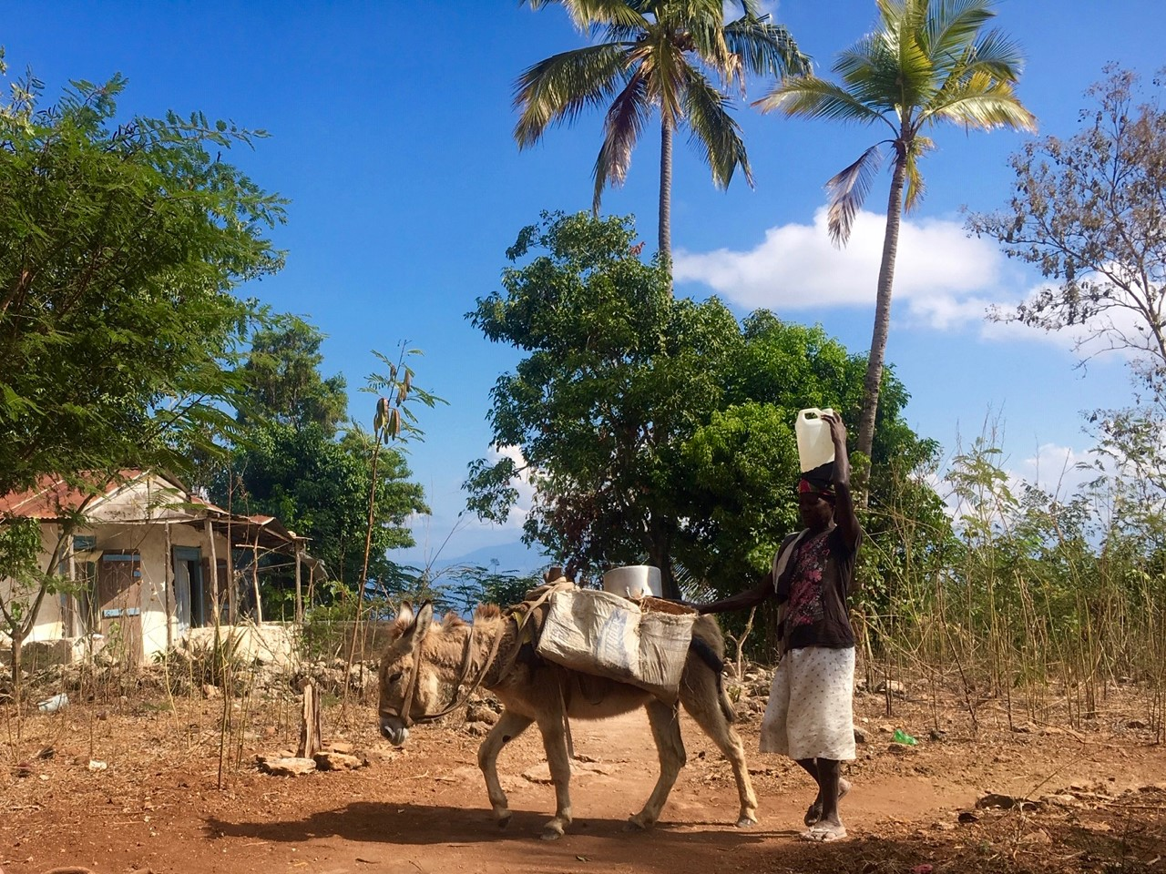 A woman walks home from the market in a rural community. After four months of lockdown, increasing inflation, and insecurity, the people of rural Haiti are suffering more than ever. (Photo by Cindy Corell)
