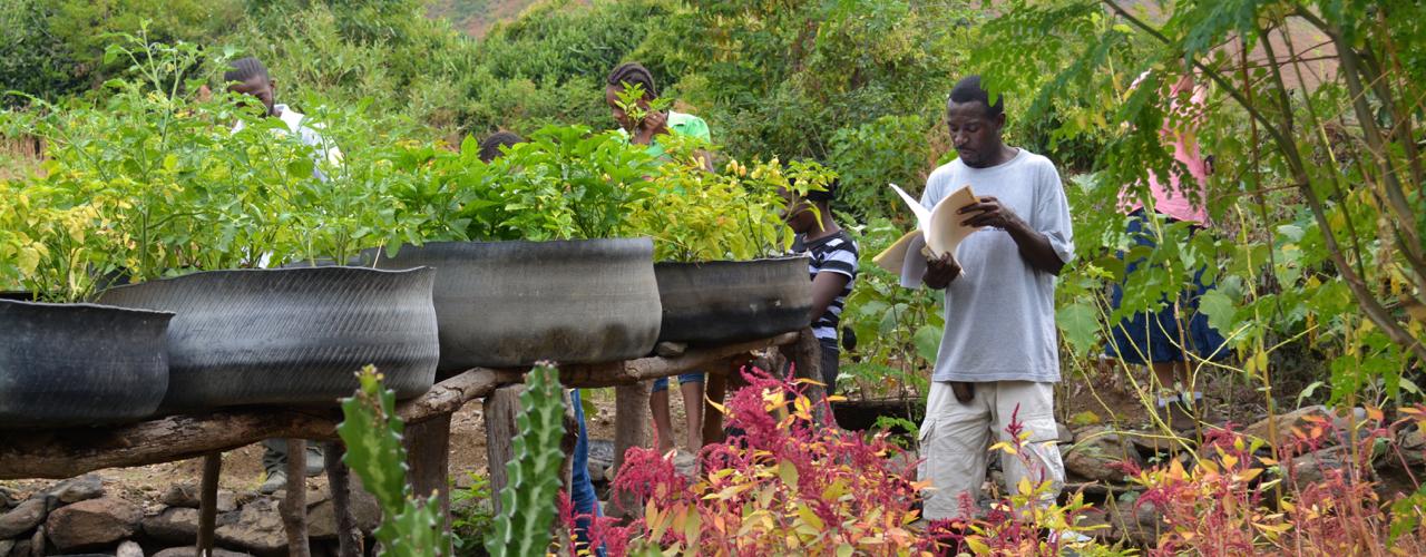 Herve Delisma evaluates a yard garden in a community near Bayonnais, February 2015. Photo by Cindy Corell.