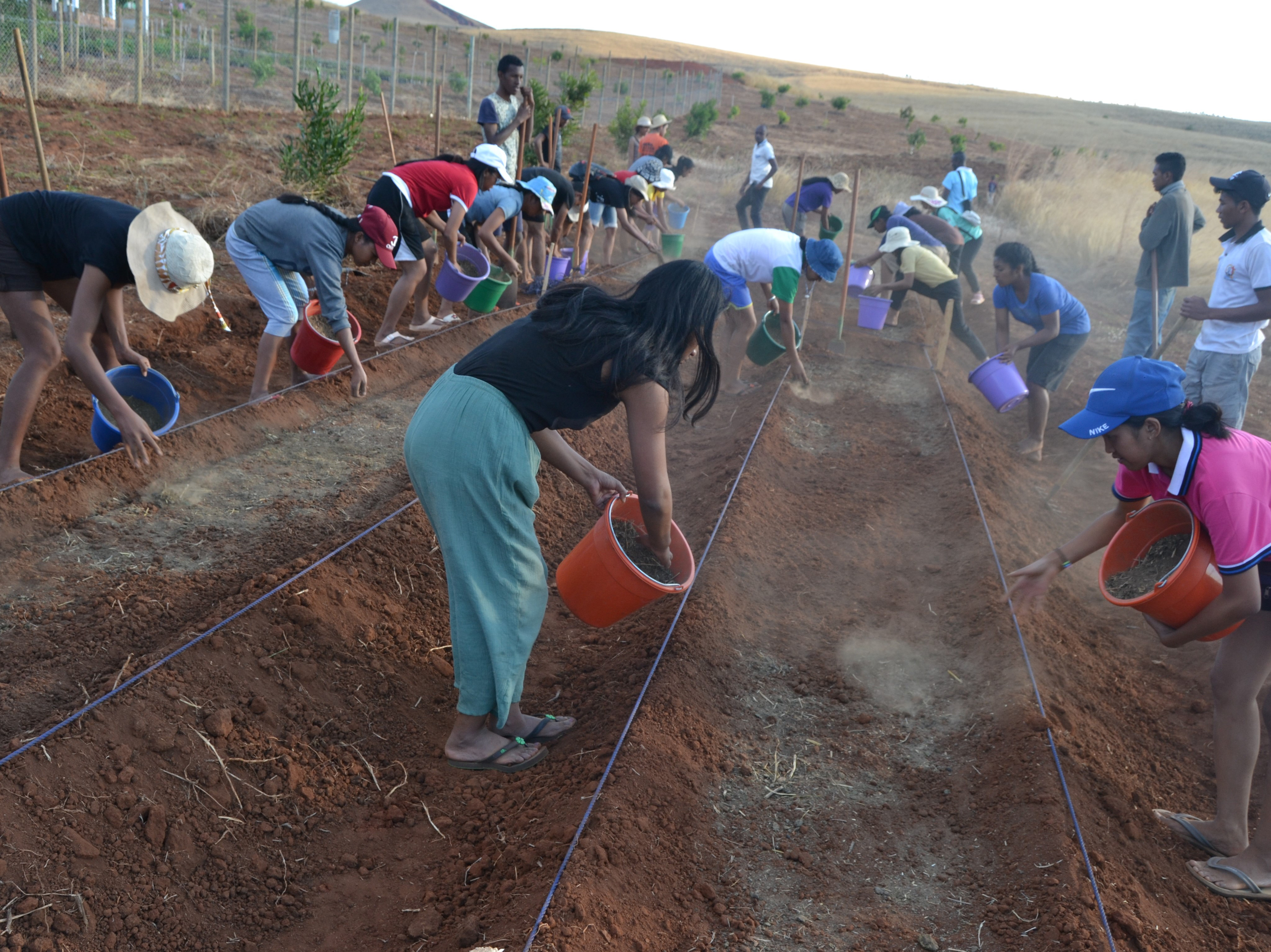 Agronomy students from the FJKM University preparing a vegetable garden at the fruit center.