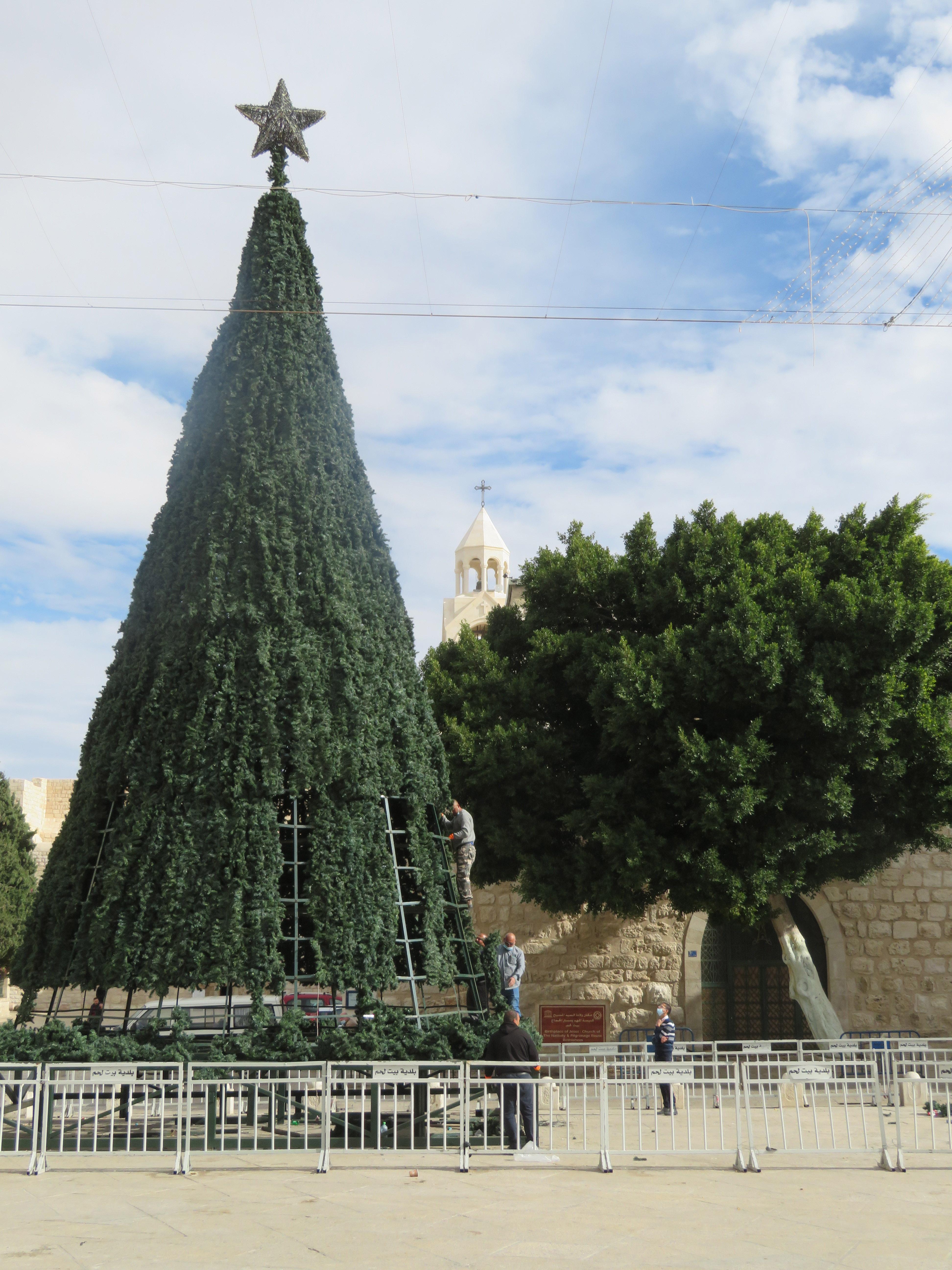 Assembling the Christmas Tree on Manger Square in Bethlehem in late November.