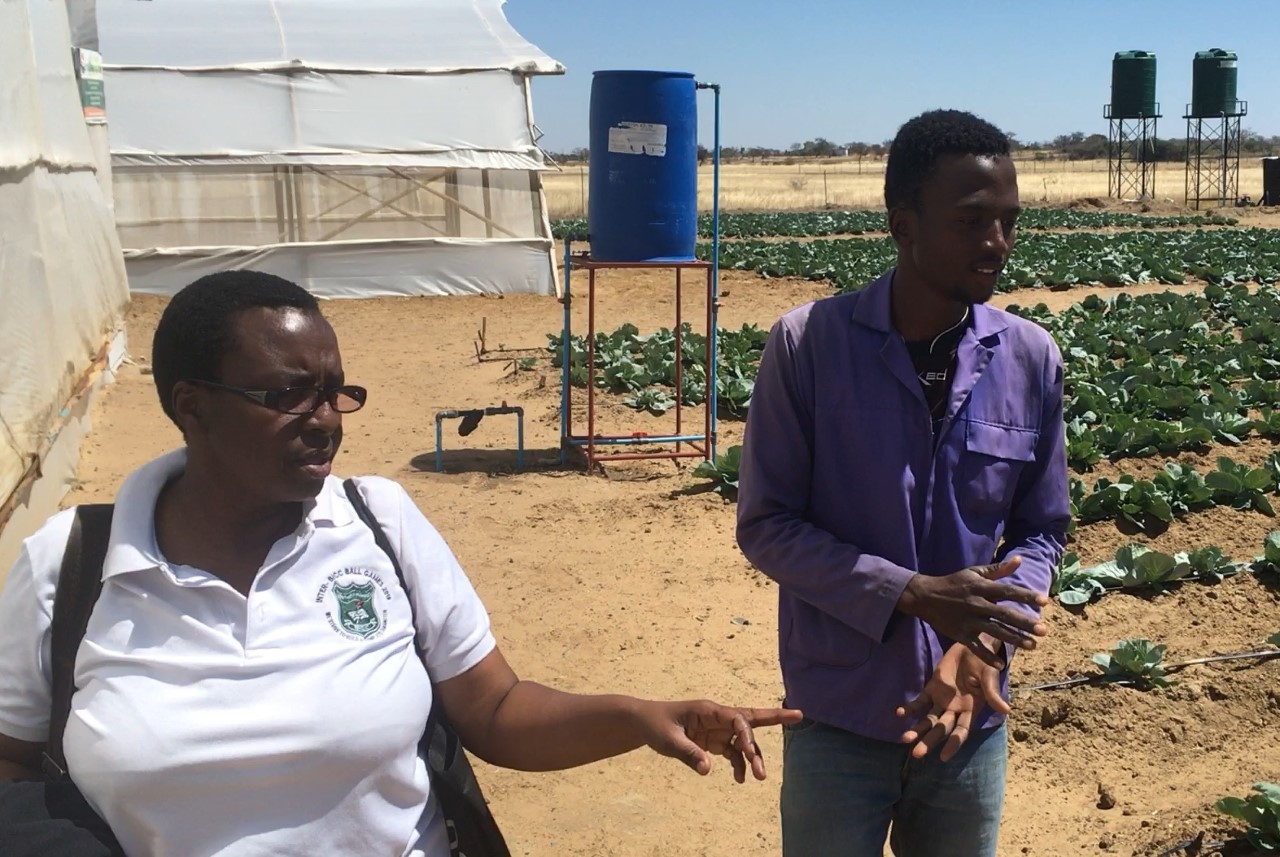 Operations Manager Sibonile Nxumalo and Agronomist Roger Mabhena survey the cabbage crop outside of the three greenhouses at the UPCSA farm at Vimridge. (Photo credit Doug Tilton.)