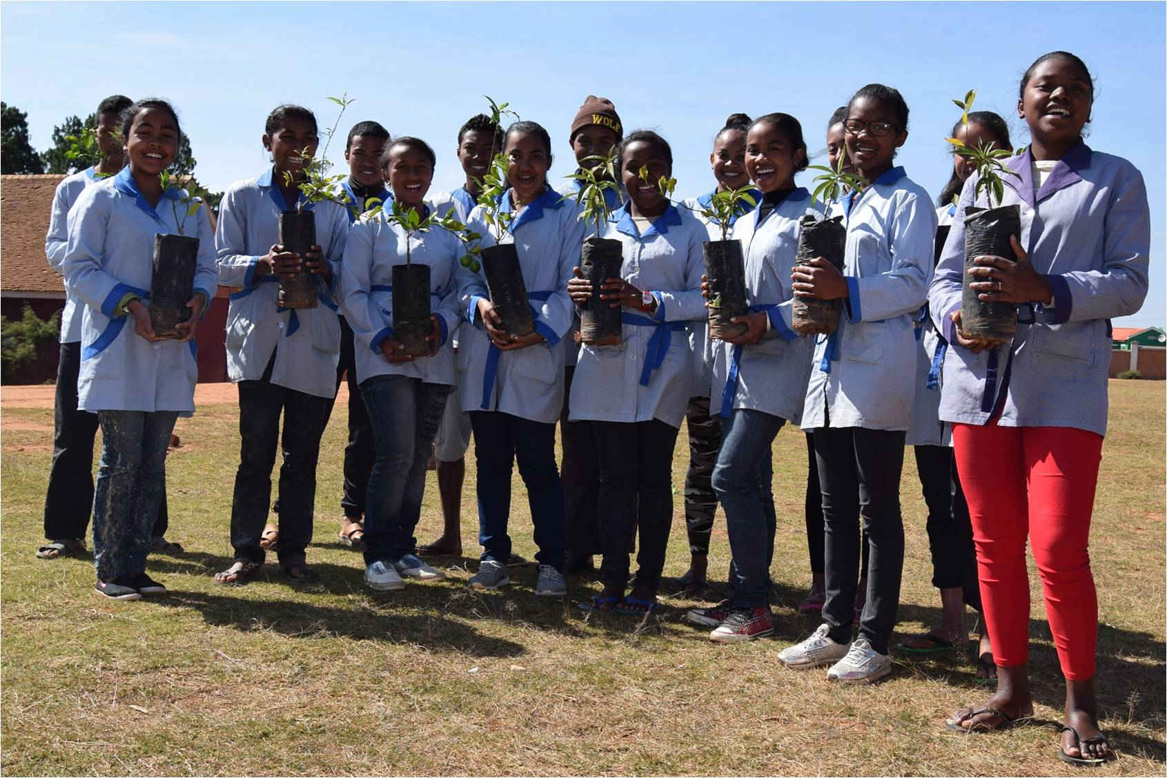 "Photograph from the ""How to plant trees at schools"" brochure to be distributed to FJKM schools."