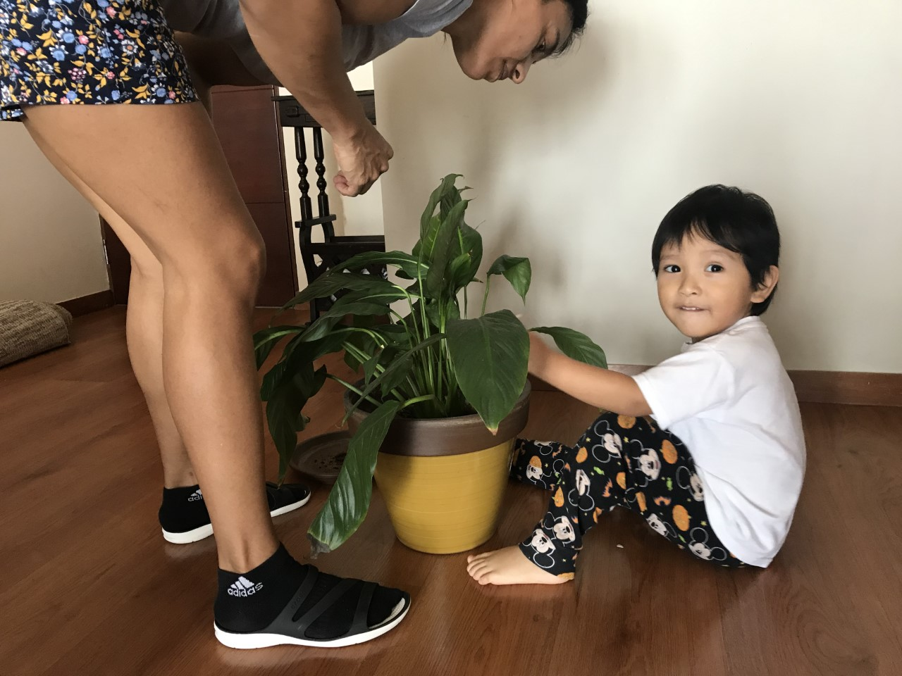 Jenny helps keep Thiago active and entertained by caring for the plants.