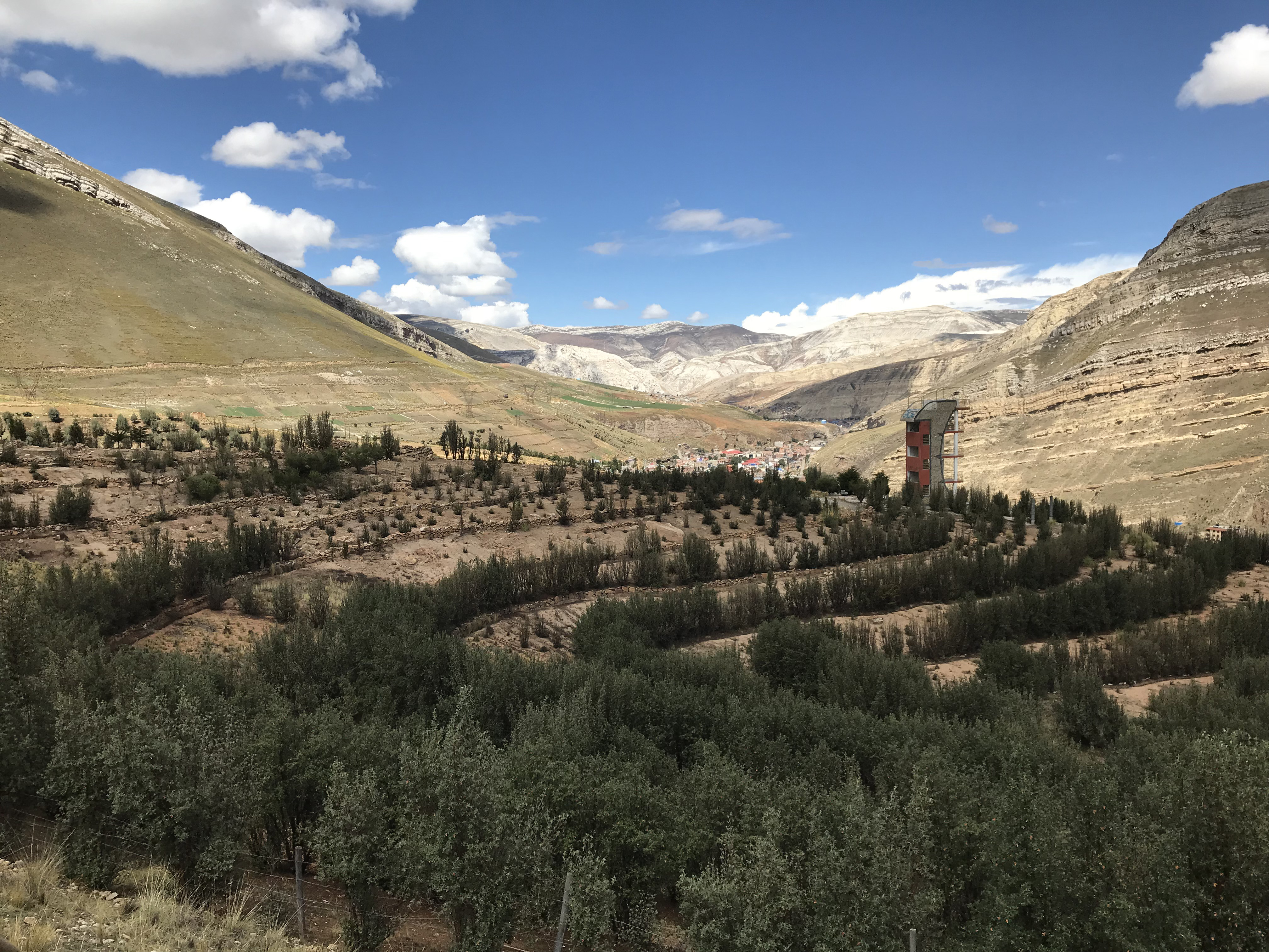 Residents of La Oroya have initiated a green wave of resistance by recuperating patches of poisoned land on the outskirts of La Oroya proper.