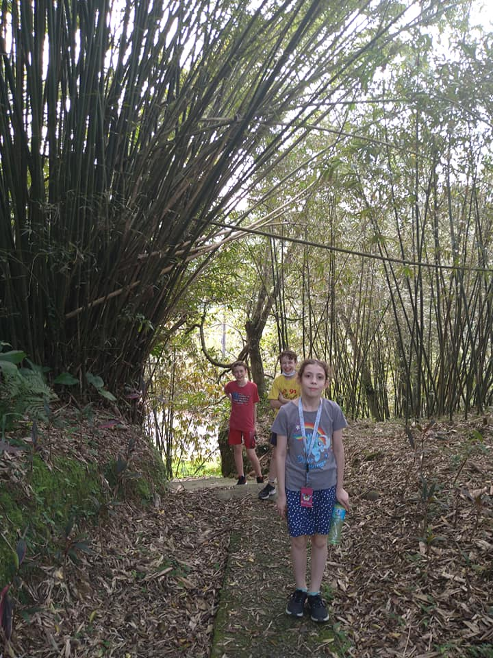 Seitz kids hiking in northern Taiwan. Photo by Emily Seitz.
