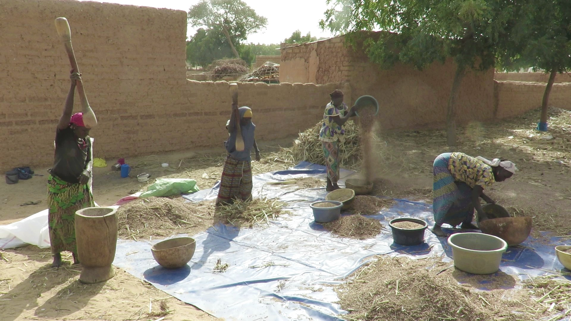 Women in Niger pound and sift millet, to separate the grain from the chaff. The Presbyterian Hunger Program has helped fund a grain bank in their town, which will help them safely store grain during the long dry season. The ability to store grain means they will not have to immediately sell their crops and then buy them back later in the season, when the price has increased.
