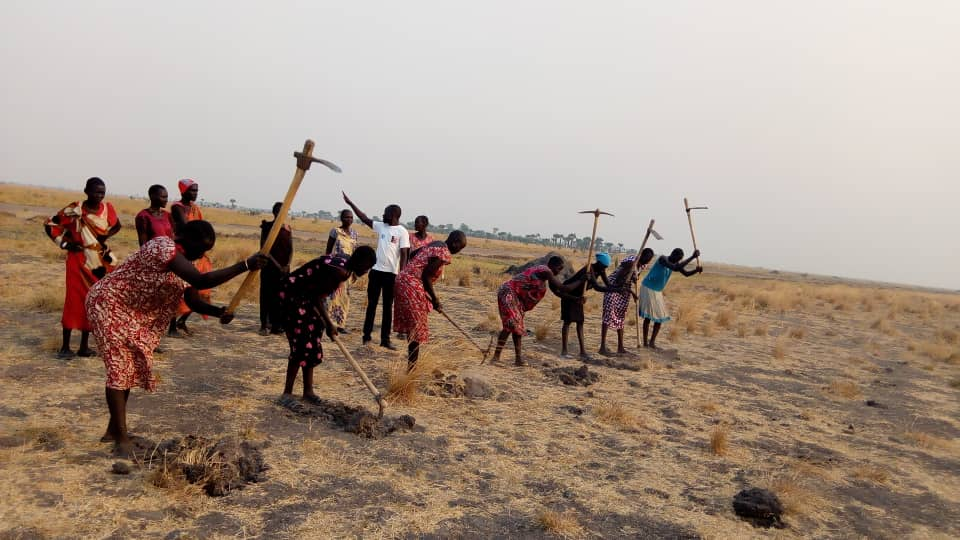 Women and girls clear the land for farming. (Photo credit: Hope Restoration South Sudan)