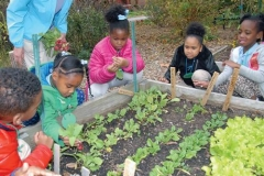 Church volunteers and children work together in a community garden. Earth Care Congregations commit to environmental stewardship in ownership, education and outreach activities. (Photo courtesy Second Presbyterian Church, St. Louis)
