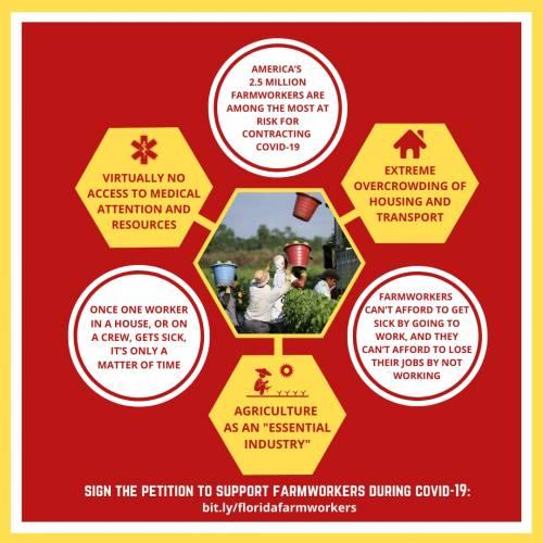 COVID farmworker diagram