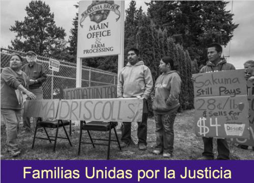 Farmworkers boycotting Driscoll