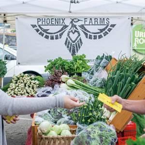 women at farmers market taking voucher