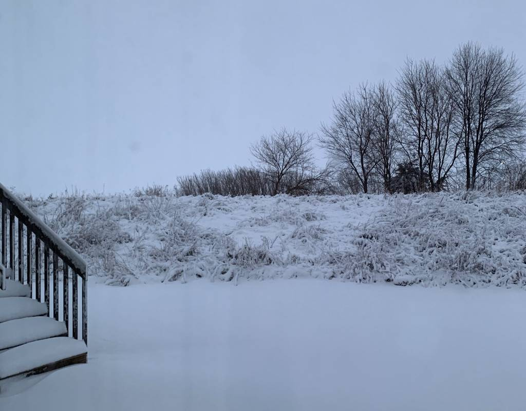 New Snow. No Tracks.