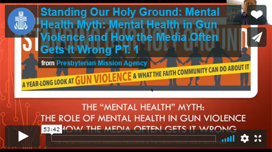 Mental Health Myth, the role of mental health in gun violence