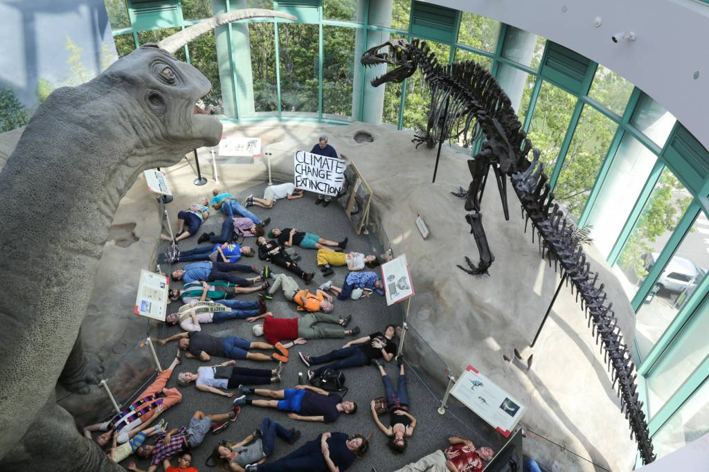 NC Museum of Natural History Die-In