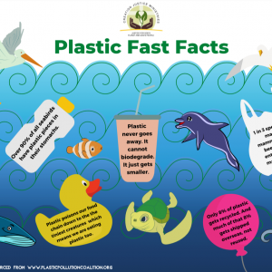 Plastic Fast Facts Graphic