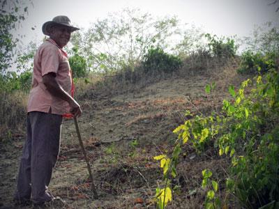 A walking tour of the farm with Ubaldo.