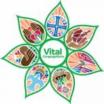 Vital Congregations scholarship application cover
