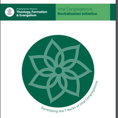 Vital Congregations manual cover