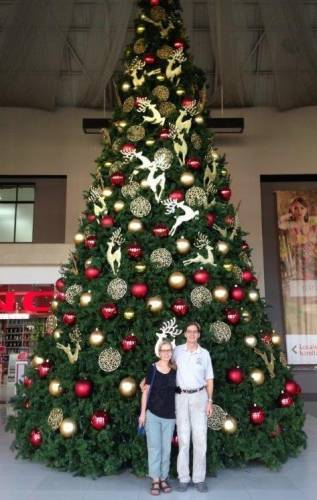 Giant Christmas tree in the Plaza Magdalena