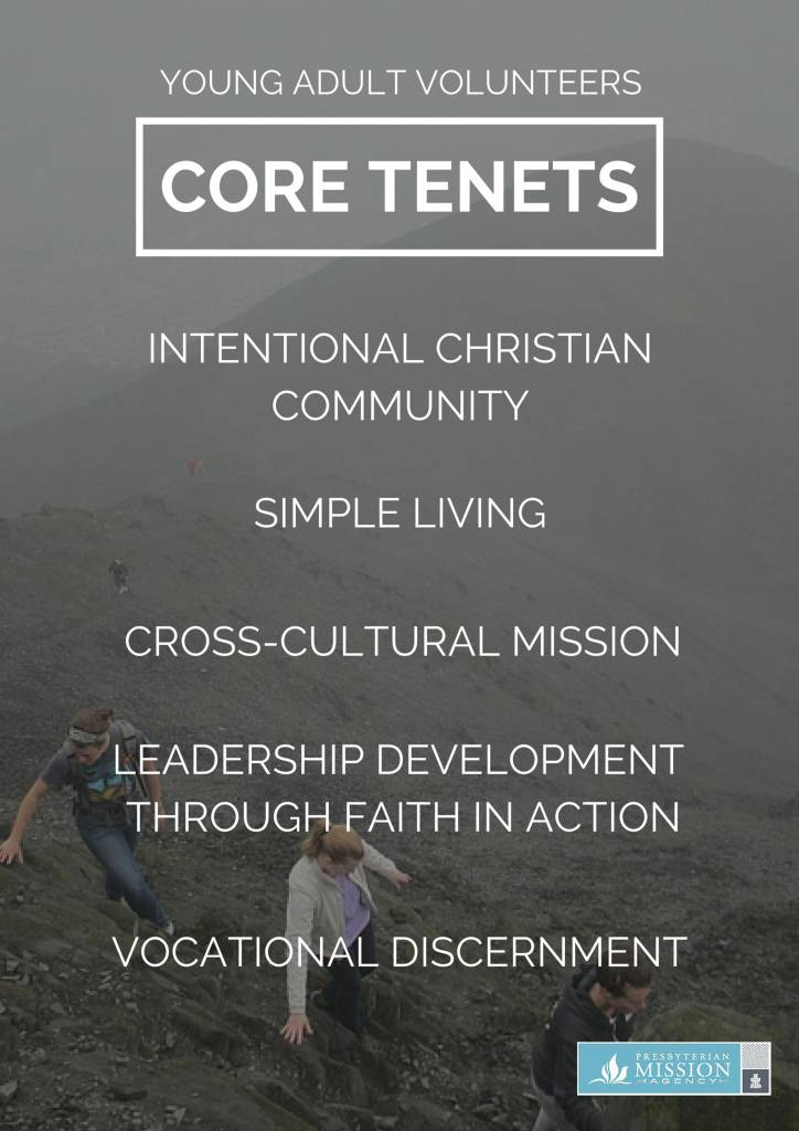 young_adult_volunteers-core-tenets